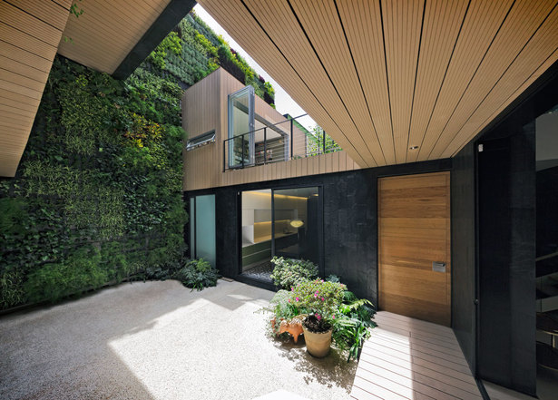 Patio View and vertical garden. Photo Hector Armando Herrera.