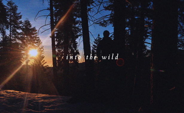 into the wild project cover