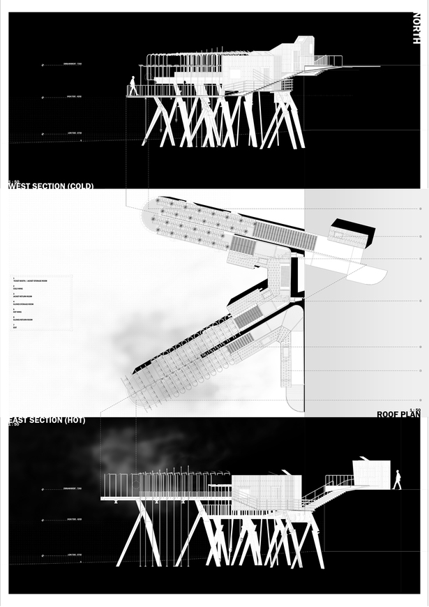 Elevations + Plan