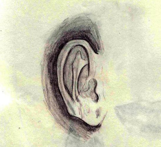 Quick Ear Sketch