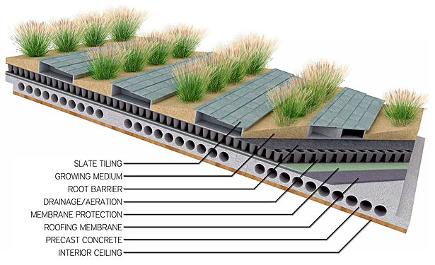 detail showing sloped green roof design