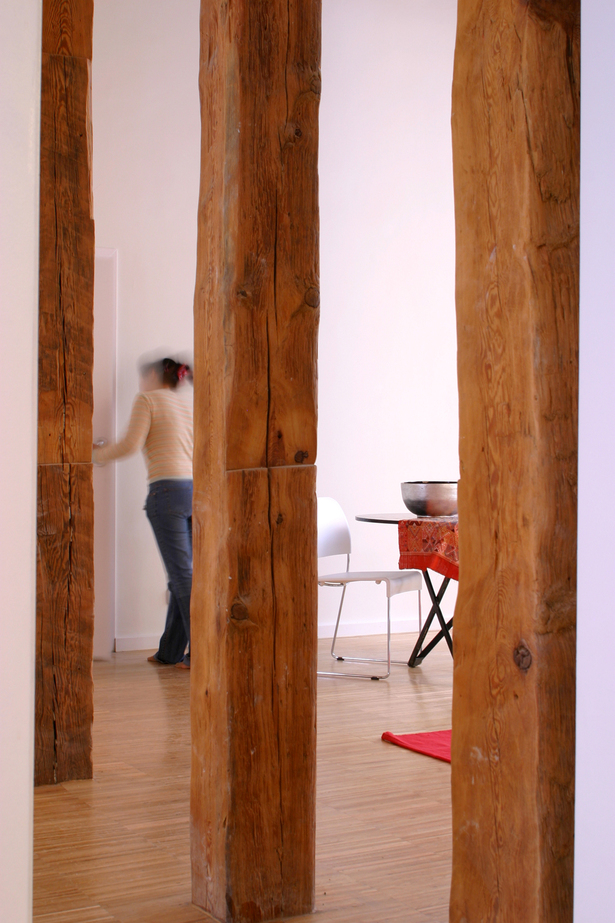 ideas para un Loft. Rehabilitación de edificio en Madrid