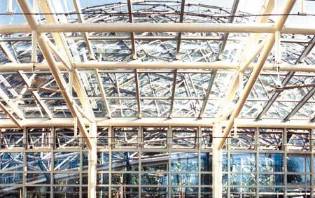 Temperate House Curtain Wall Leaks Investigation
