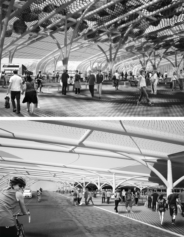 Rendered Views of Markets under Structures