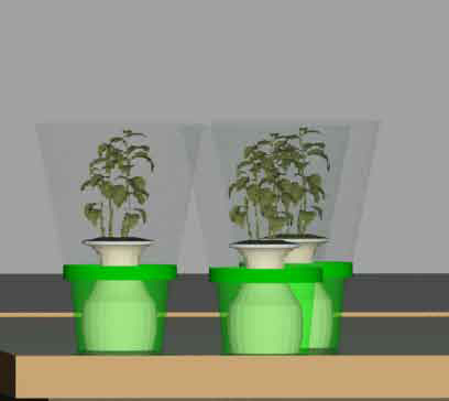 Plant Carrier- Once the warrior makes a pot in Art Therapy, they are able to take home a small plant. The idea is for them to be able to nurture it and watch it grow. This product is designed to help aid in transporting the plant home with a light-weight easy-to-carry container that fits in a standard cup holder. This way, the plant won't topple over. The top portion easily snaps off and the plant can be pulled out.