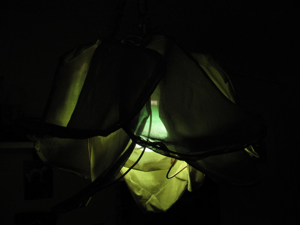Green ceramic bulb, side view