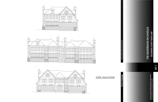 Strip Elevations