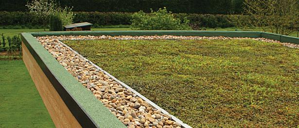 Green Sedum Roofs By In It Studios In It Studios