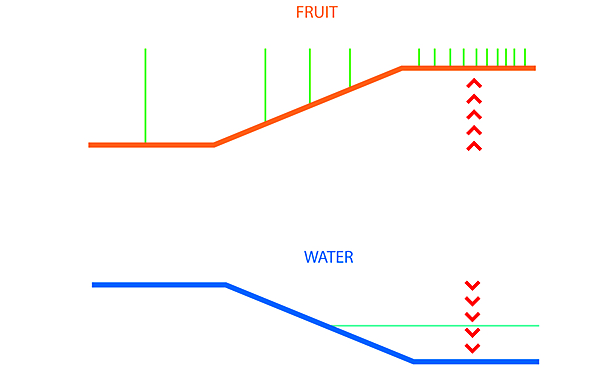 Diagram of slope and water