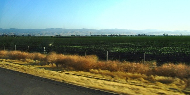 The I-5 between Tracy and Patterson, CA. Image via wikimedia.org