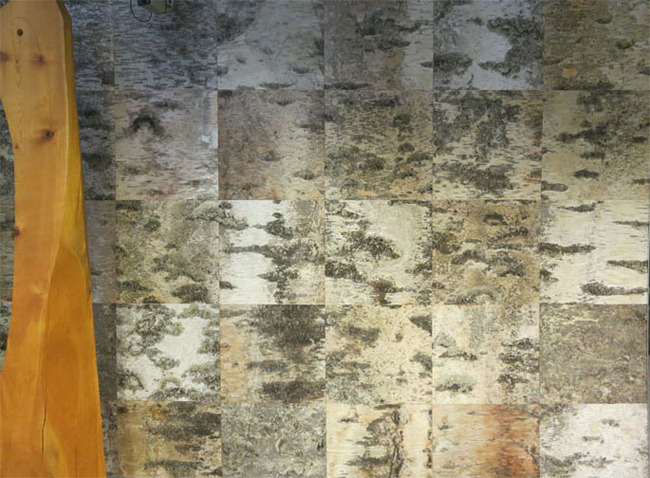 Birch bark wall at Pilke Science Centre