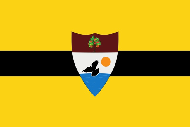 The flag of Liberland – what could be the world's newest country (and tax haven). Credit: Liberland.org