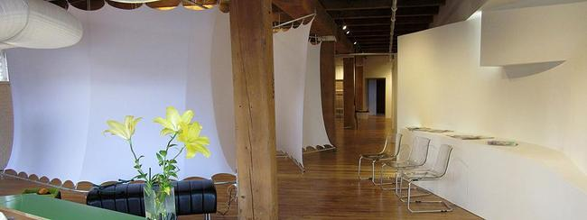 Ambiente Gallerie - Interior project for a chiropractic clinic and art gallery in Minneapolis, Minnesota by LEAD Inc.