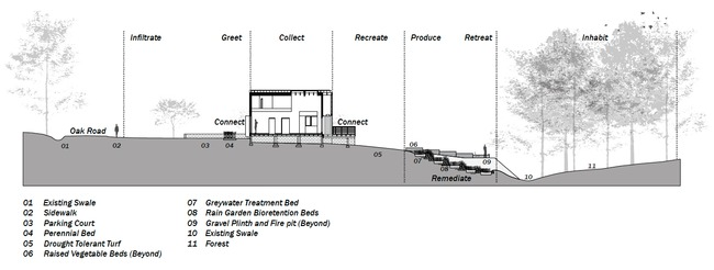 Site Design Section