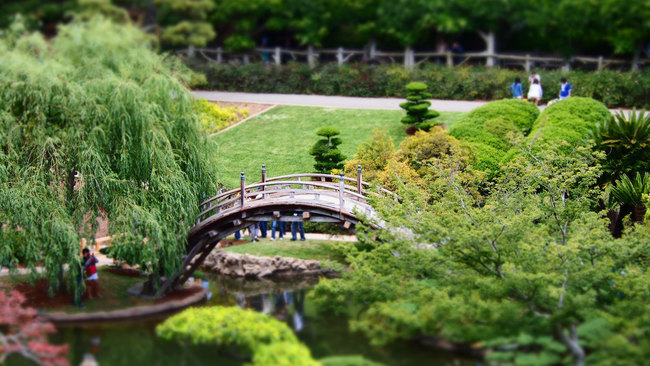 A view of the moon bridge at the Huntington Library's historic Japanese Garden in San Marino, CA. Photo: Ian D. Keating/Flickr.