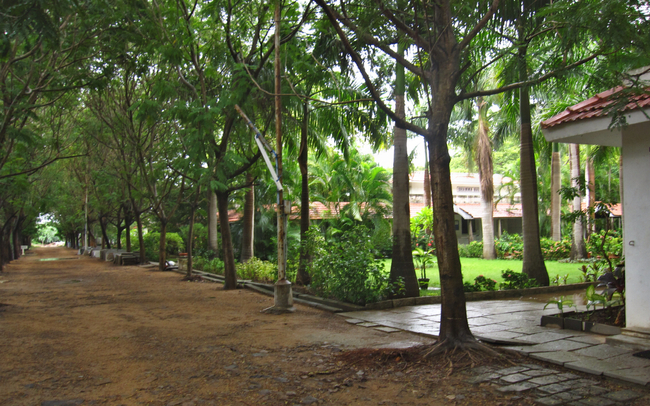 Walking path and Dhamma hall