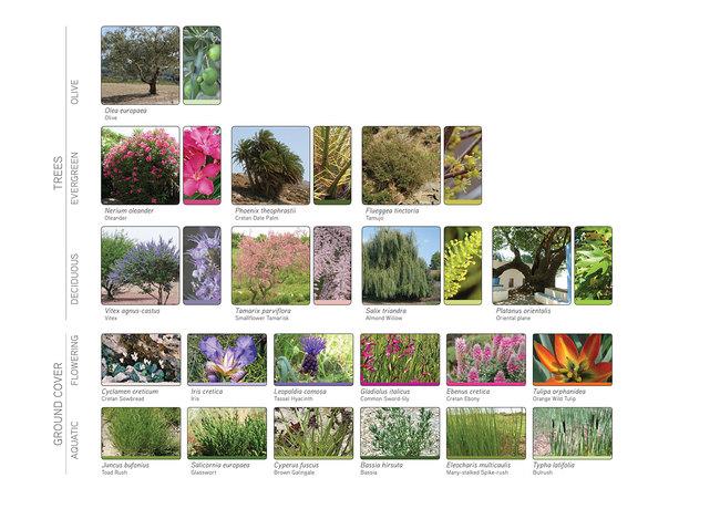 Landscape material diagram (Image: Atelier3AM)