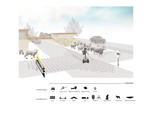HONORABLE MENTION: URBAN TRANSHUMANCE, KyungJin Hong