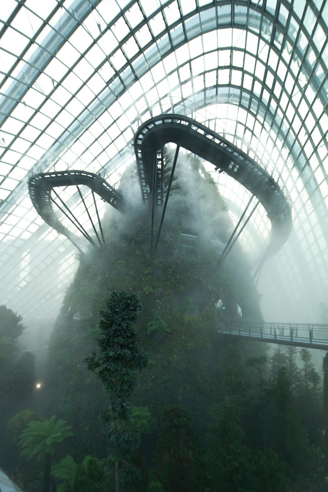 Cooled Conservatories, Gardens by the Bay, Singapore by Wilkinson Eyre; Photo: Craig Sheppard