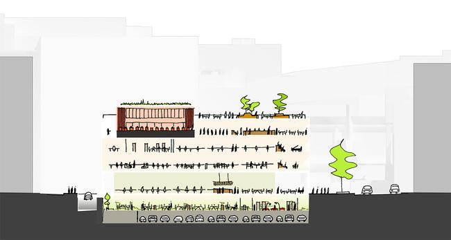 MLK Renovation Design Ideas, Team 1- Mecanoo + Martinez and Johnson
