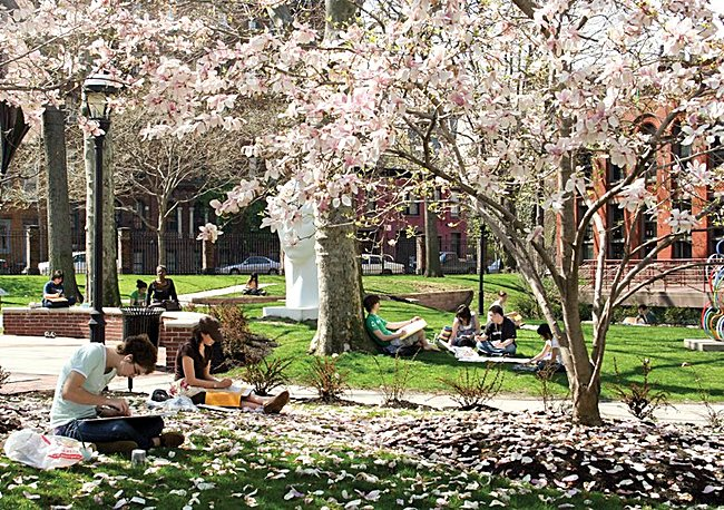 Pratt's Brooklyn Campus in the beautiful Clinton Hill section of Brooklyn. Photo credit: Bob Handelman