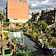 Photographs depicting last years' Union Street Urban Orchard, produced by the same team as the Urban Physic Garden. Photographs copyright Mike Massaro.