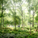 Eco Spine Park Azalea Garden  West 8 urban design & landscape architecture