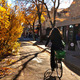 13th St., Boulder, CO. Image via PeopleForBikes.