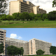 Top: Corbu's decency to break up the faade Bottom: A drab Gandhinagar 