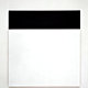Ellsworth Kelly's